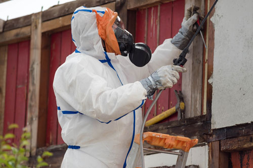 harbour city environmental services - asbestos removal