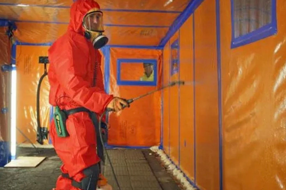 mold remediation services in Nanaimo
